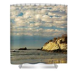 Rhode Island Beach In Winter Shower Curtain by Nancy De Flon