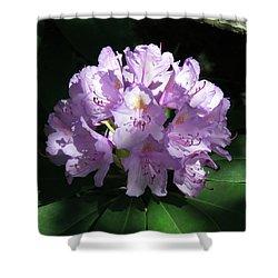 Rhododendron 2 Summer 2017 Shower Curtain