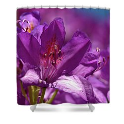 Rhododendron  Shower Curtain by Baggieoldboy