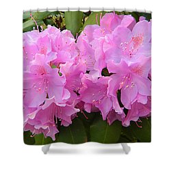 Rhododendron Beauty1 Shower Curtain