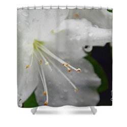 Rhododendron Blossom Shower Curtain