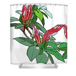 Rhododendron Buds Shower Curtain