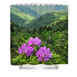 Rhododendron View Shower Curtain
