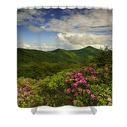 Rhododendrons On The Blue Ridge Parkway Shower Curtain