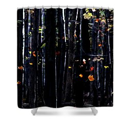 Rhythm Of Leaves Falling Shower Curtain by Bruce Patrick Smith