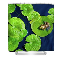Shower Curtain featuring the photograph Ribbit by Greg Fortier