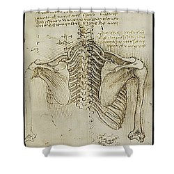 Ribcage Main Shower Curtain by James Christopher Hill