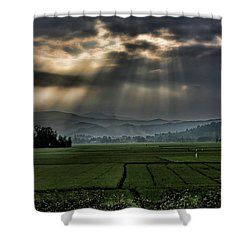 Rice Fields Rays Light  Shower Curtain