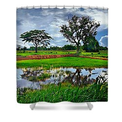 Rice Paddy View Shower Curtain