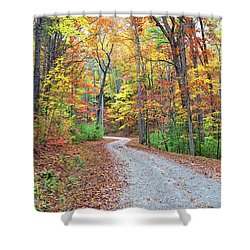 Rich Mountain Road Shower Curtain