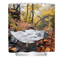 Ricketts Glen State Park Ganoga Falls Allegheny Mountains Pennsylvania Shower Curtain by Mark VanDyke