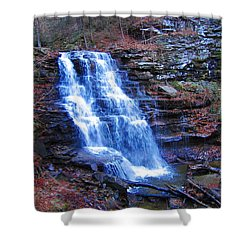 Ricketts Glen Waterfall 3941  Shower Curtain