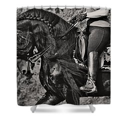 Rider And Steed Dance Shower Curtain by Wes and Dotty Weber