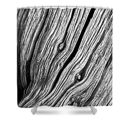 Ridges - Bw Shower Curtain