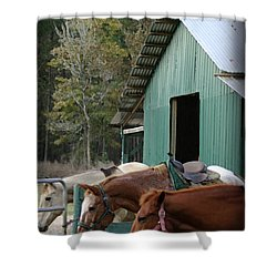 Shower Curtain featuring the digital art Riding Horses by Kim Henderson