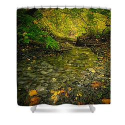 Riding Stream Shower Curtain