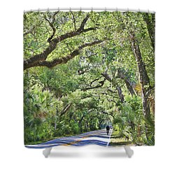 Riding The Ormond Loop Shower Curtain