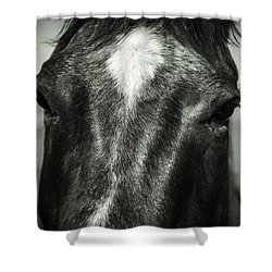 Right Between The Eyes Shower Curtain