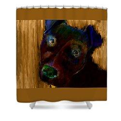 Rillo In Watercolor Shower Curtain