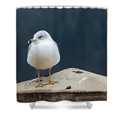 Ring Bill Shower Curtain