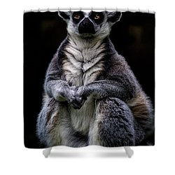 Shower Curtain featuring the photograph Ring Tailed Lemur by Chris Lord