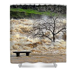 Shower Curtain featuring the photograph Ringside Seat by AJ Schibig