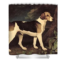 Ringwood Shower Curtain by George Stubbs