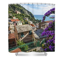 Riomaggiore Town Shower Curtain