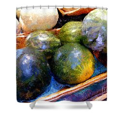 Ripe And Luscious Melons Shower Curtain by RC DeWinter