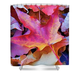 Ripe For Halloween Shower Curtain by Lanjee Chee