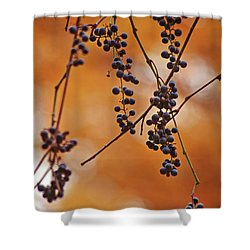 Ripe Wild Grapes  Shower Curtain