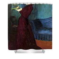 Ripple-ronai: Woman, 1892 Shower Curtain by Granger