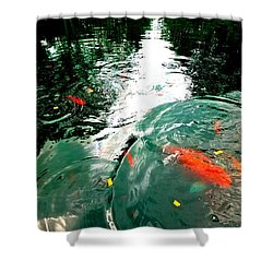 Ripple To The Past  Shower Curtain