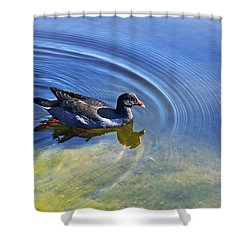 Ripples And Seaweed Shower Curtain by Kaye Menner