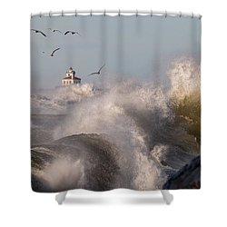 Shower Curtain featuring the photograph Rise Above The Turbulence by Everet Regal