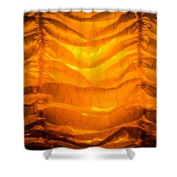Rise And Shine Shower Curtain by Bruce Pritchett