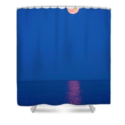 Rise Shower Curtain