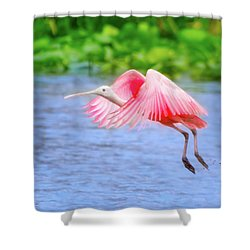 Rise Of The Spoonbill Shower Curtain by Mark Andrew Thomas
