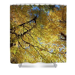 Rise Up Shower Curtain