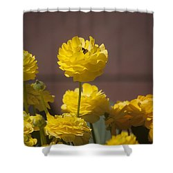 Rising Above The Crowd Shower Curtain