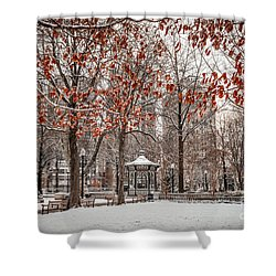 Rittenhouse Snowscape Shower Curtain
