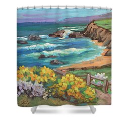 Ritz Carlton At Half Moon Bay Shower Curtain