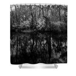River Bank Palmetto Shower Curtain by Marvin Spates