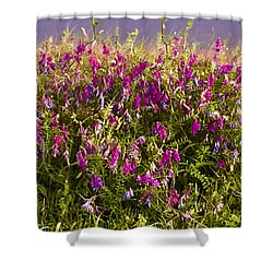 River Dandies Shower Curtain