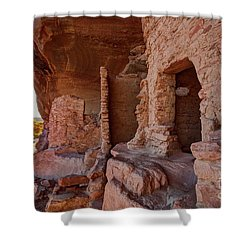 River House Ruin Shower Curtain