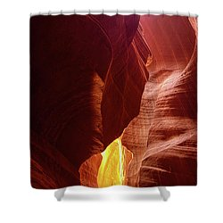 River Of Gold Shower Curtain by Lucinda Walter