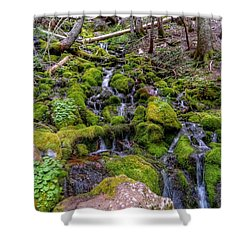 River Of Moss Shower Curtain