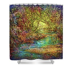 River Peace Remembering Shower Curtain by Joel Bruce Wallach