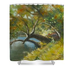 River Reverie Shower Curtain
