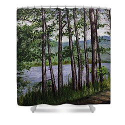 Shower Curtain featuring the painting River Road by Ron Richard Baviello